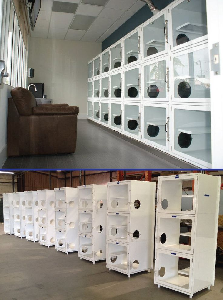 modern design cat condos/cages here in our plant and an after pic installed in a quiet, peaceful room. Lucky felines!