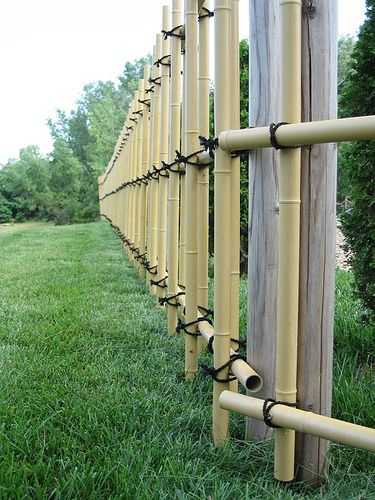 Images about bamboo fences on pinterest