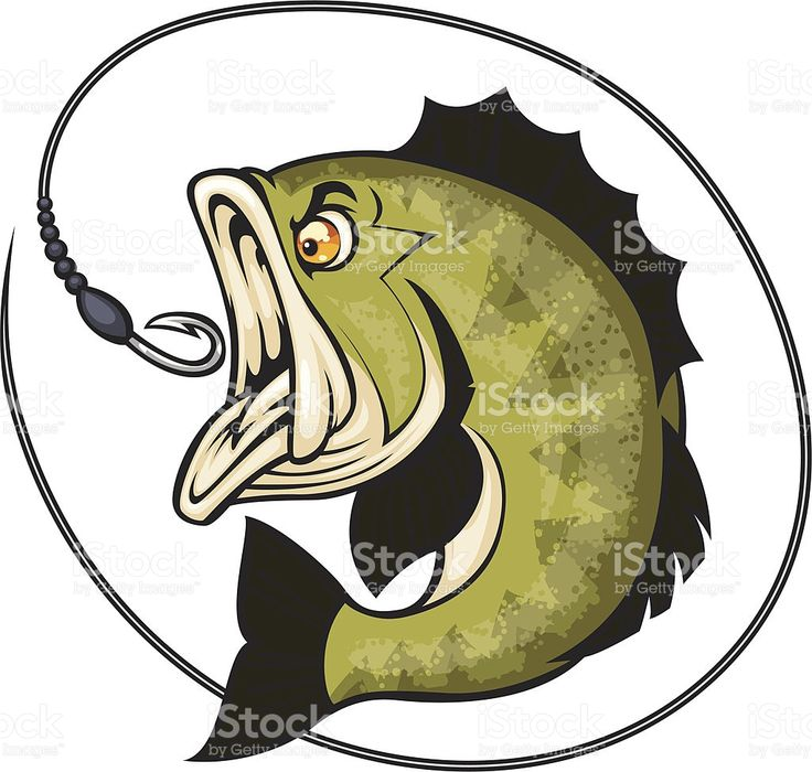 cartoon bass about to bite a hook Fish graphic, Vector