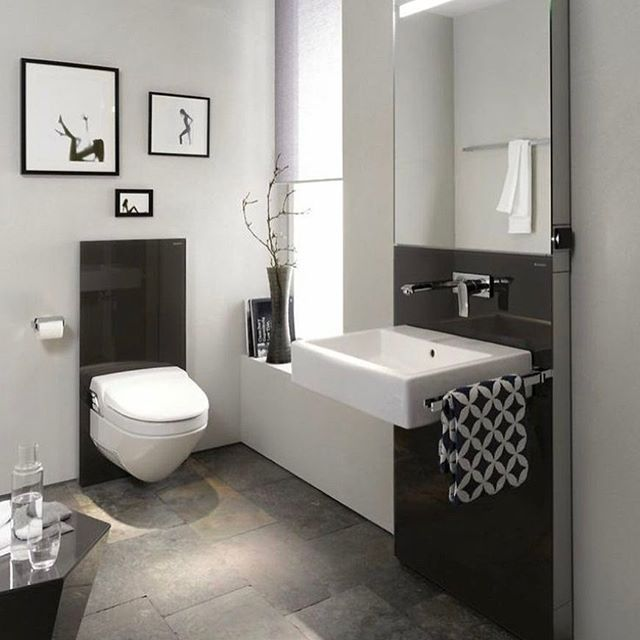 Pics Of In any bathroom big or small a toilet is an absolute essential If