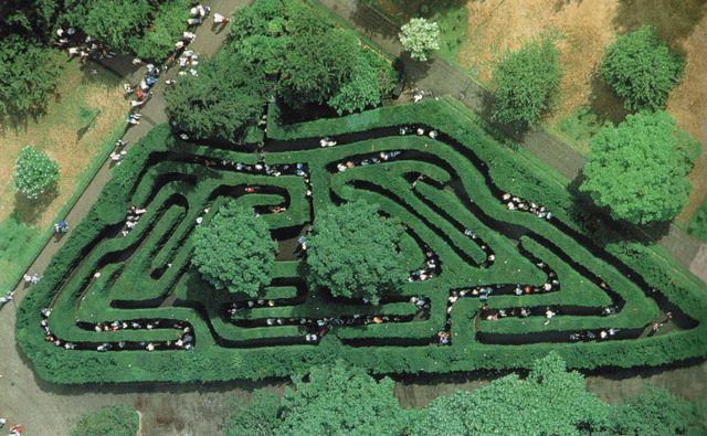 Il celebre labirinto di Hampton Curt in Inghilterra, un capolavoro di carpini e tassi piantati nel 1690