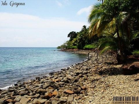 Isla Gorgona, #Colombia #SomosTurismo