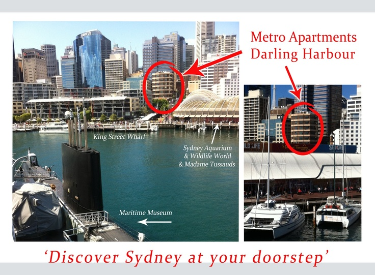 Metro Apartments on Darling Harbour: Rubber duck arrives into Darling Harbour