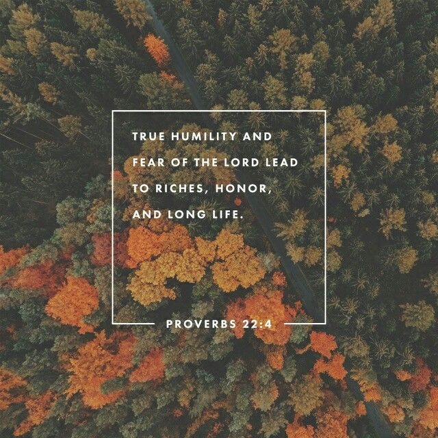 Humility is the fear of the Lord ; its wages are riches and honor and life. Proverbs 22:4 NIV http://bible.com/111/pro.22.4.NIV
