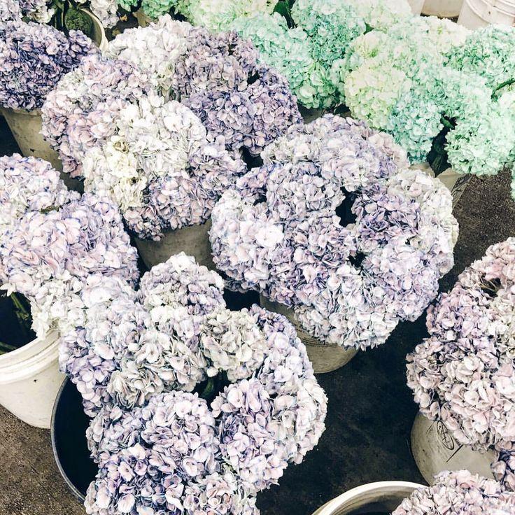 www.lesleycutlerbridalwear.co.uk  #buttonholes #wedding #weddingflowers #flowers #bride #bouquet