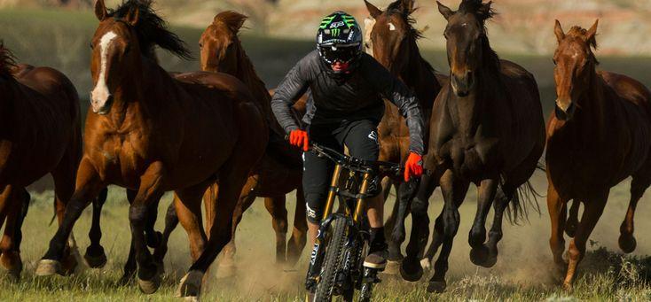 Alp-Con CinemaTour 2015 - News 1 #AlpCon #Mountainbike #Freeride #unReal #AnthillFilms #TGR #SherpasCinema #DannyMcAskill
