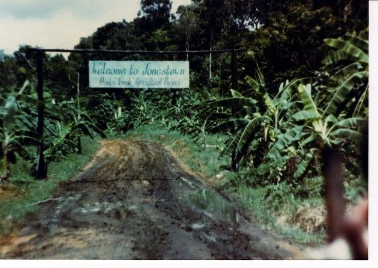 Suggested by smithal1 and zaelysapellicierp.On 18 November 1978, almost a thousand people – most of them American – in a remote commune in Jonestown, Guyana, died of apparent cyanide poisoning. They were all members of the Peoples Temple, a religious organisation led by Jim Jones that has since been referred to as a cult. The deaths at the commune were viewed as a mass suicide, though survivors consider it to be mass murder. Oh, and if that wasn't enough, there's a whole Wikipedia article on…