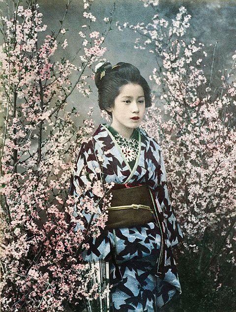 portrait of a Mayko