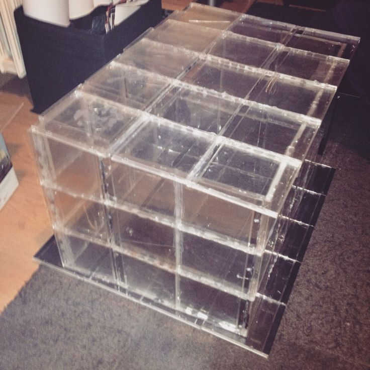 Diy greenhouse! Made from recycled empty cd cases... All hail hot glue!