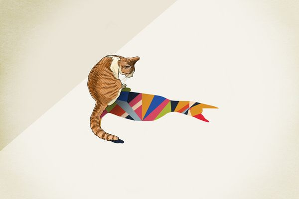 """Walking Shadow, Cat"" Art Print by Jason Ratliff"