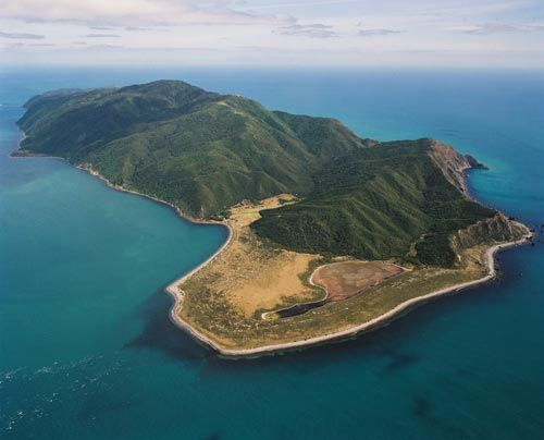 Kapiti Island bird sanctuary off the coast of the North Island.