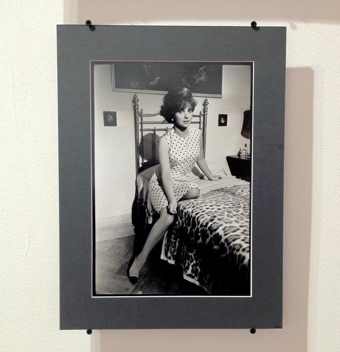 Gina Lollobrigida 30X40cm