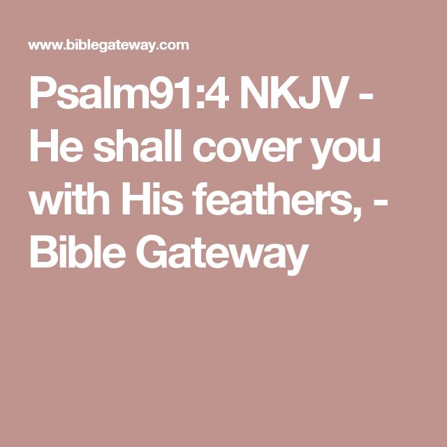 Psalm91:4 NKJV - He shall cover you with His feathers, - Bible Gateway