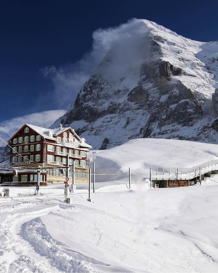 """""""Kleine Scheidegg, Above Grindelwald (Mount Eiger) #. Photography by: @Vektorg  #Switzerland_Vacations"""""""