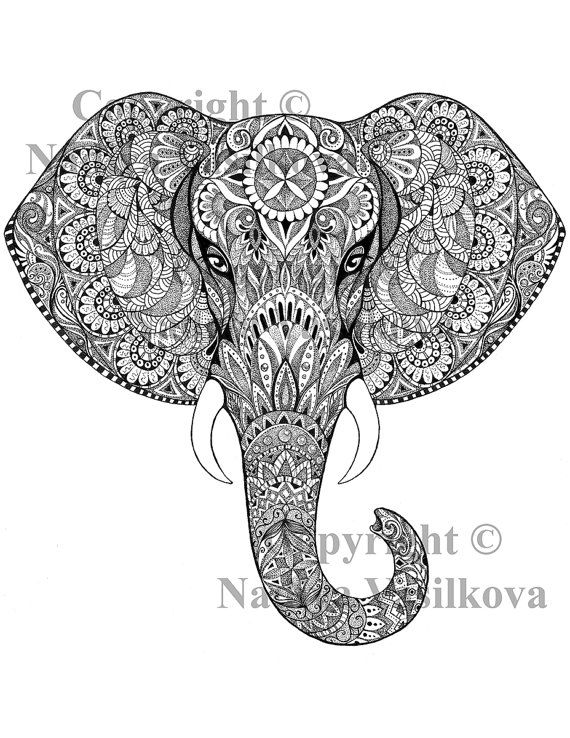 47 best coloring pages elephant/rhino/giraffe/lion images ...