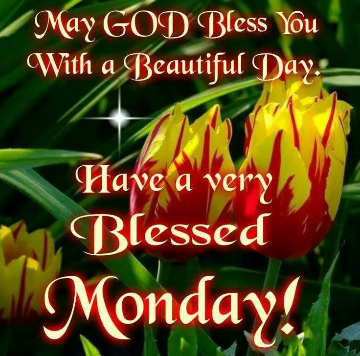 Good Morning Monday Picture Messages : Best images about mondays on pinterest happy