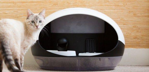 Catspad – Un distributeur de nourriture et d'eau connecté pour les chats