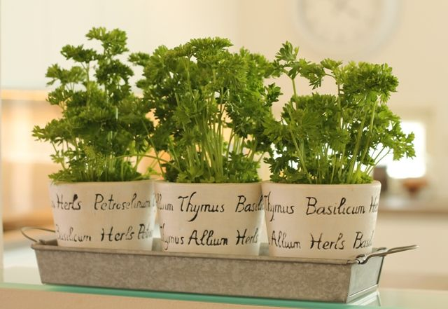 I love green elements in kitchen and these herb pots are simple but beautiful.