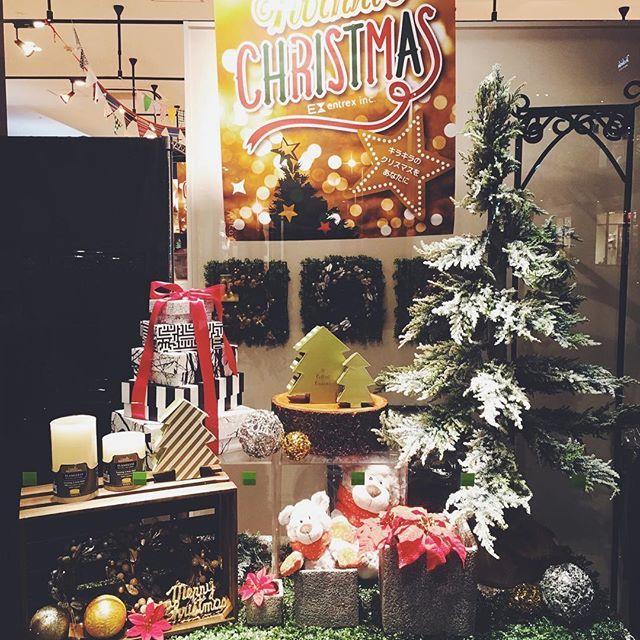【evsendaikou】さんのInstagramをピンしています。 《仙台港店の頭の中はすっかりクリスマスだよ! ウインドウディスプレイもクリスマス仕様に切り替えです!テーマは森のクリスマスメルヘン〜〜 デコレーションやお菓子などのクリスマス商品続々入荷中です!ギフトお探しの方もぜひぜひ仙台港店に遊びに来てくださいね! #entrevida #アントレビーダ #sendaikou #sendai #仙台港店 #仙台港 #仙台港アウトレット #仙台 #雑貨屋 #雑貨 #ライフスタイル #ライフスタイルショップ #クリスマス #xmas #森 #クマ #nici #冬 #クリスマスツリー #クリスマスギフト #メルヘン #おとぎ話》
