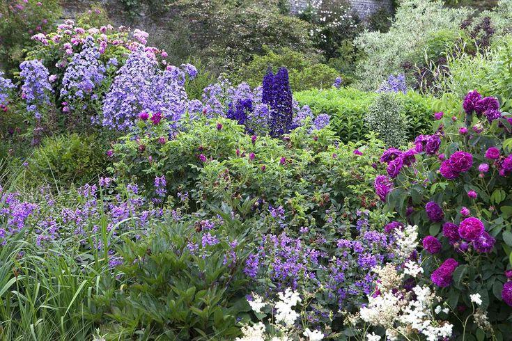 Koop nu de Borderpakket Engelse rozen (4,5 M²) vanaf €84,10 per stuk bij Directplant! ✓Voordelige staffelprijzen ✓Lage verzendkosten ✓45 gratis afhaalpunten ✓Groeigarantie!