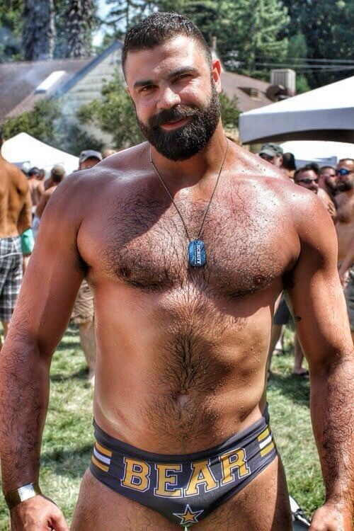 hairy male bears