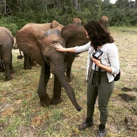 LP na Africa