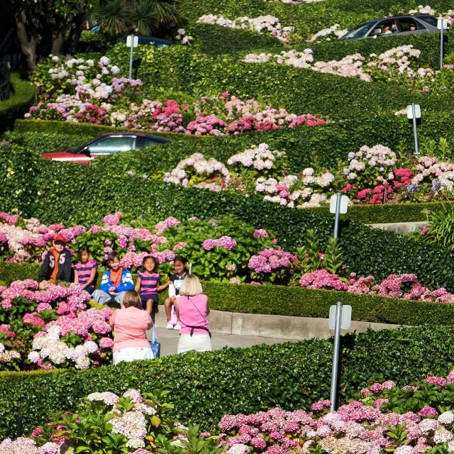 """Get the Straight Dish on San Francisco's """"Crookedest"""" Street: Photo Time on Lombard Street"""