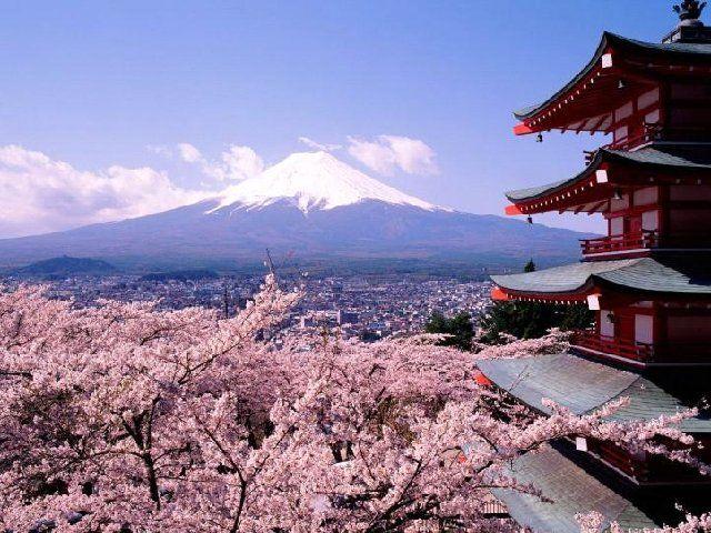 Fujiyama and spring