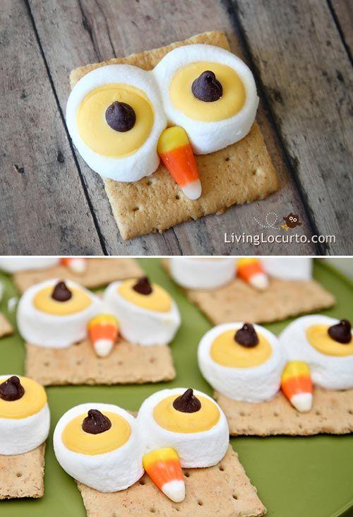 Owl S'mores Recipe by LivingLocurto.com - Fun food idea for a party!