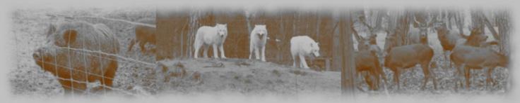 """Wildpark """"Alte Fasanerie"""" in Hanau / Klein-Auheim"""