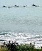 Jeffreys Bay, South Africa vacation rentals.