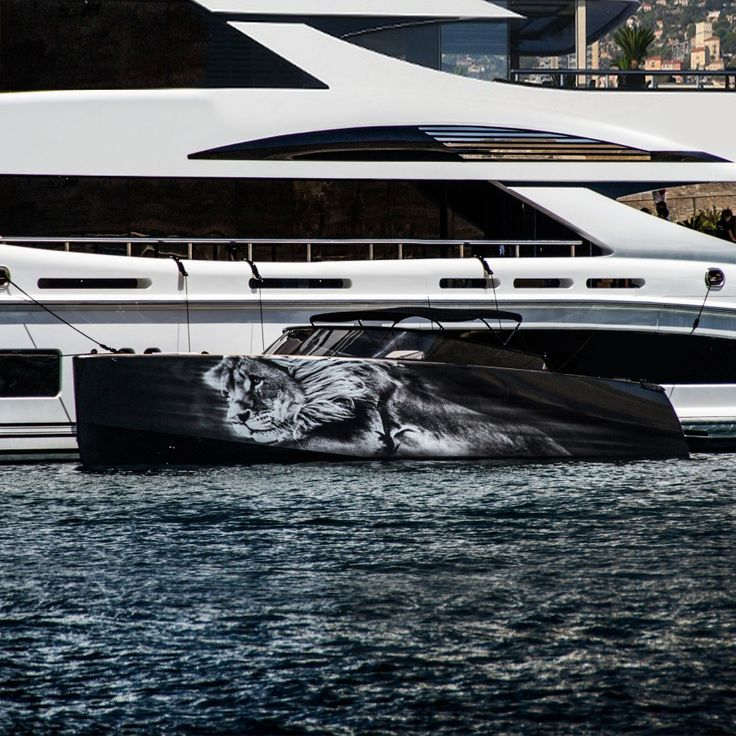 superyacht - graphic design - lion