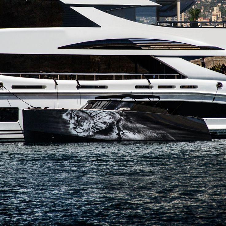 superyacht - graphic design - lion