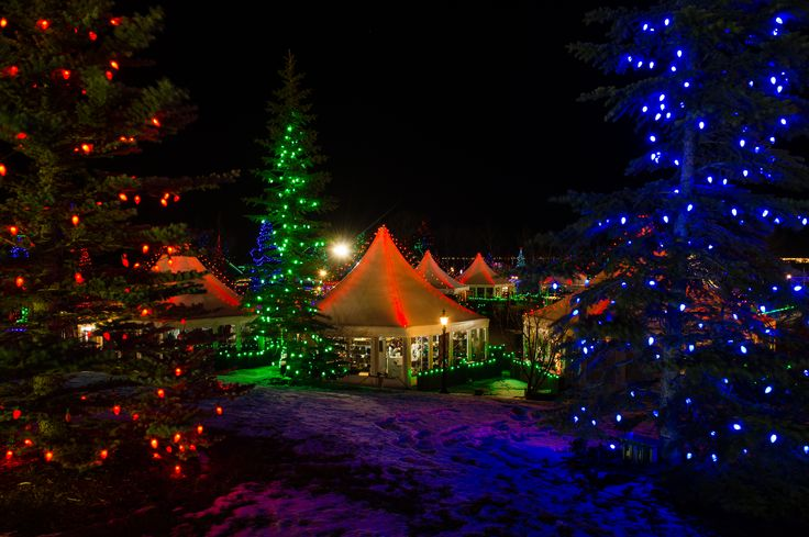 The Christmas Lights at Spruce Meadows #XmasLightsSM