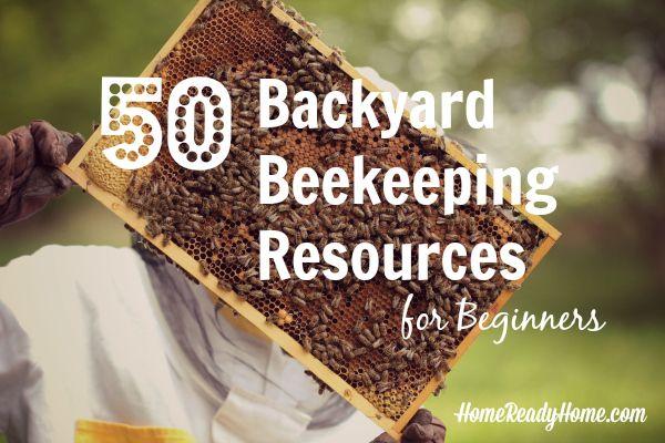 50 Backyard Beekeeping Resources for Beginners
