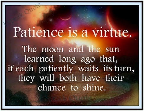 Patience is a virtue.Inspiration Ideas, The Universe, Wisdom, Patience, So True, Favorite Quotes, Inspiration Quotes, Sun, Virtue