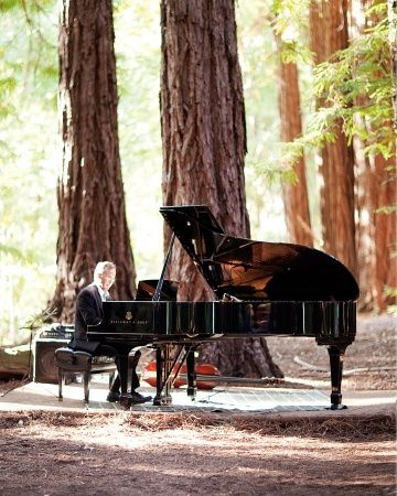 a pianist en plein air lends grandness and formality to this wedding in the woods