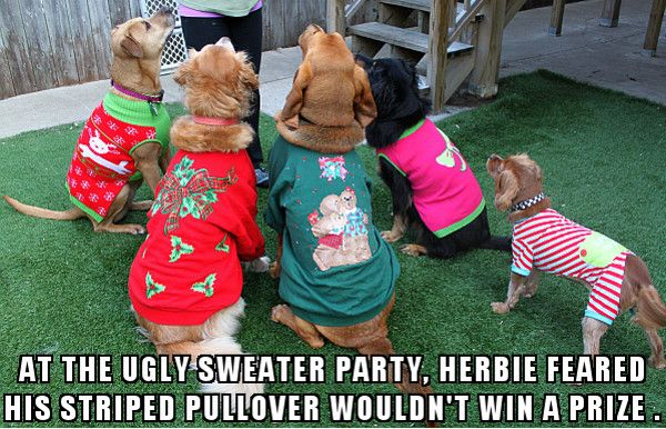 Christmas Ugly Sweater Party with dogs.