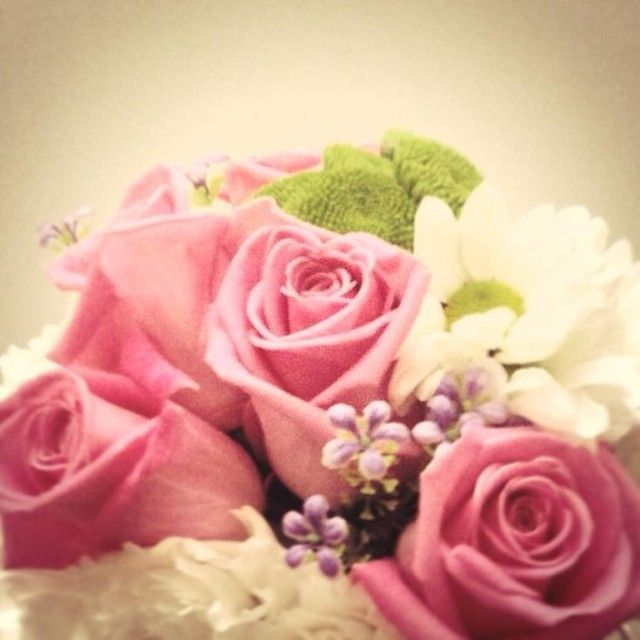 Bom dia! #soledade #flowers #portugal