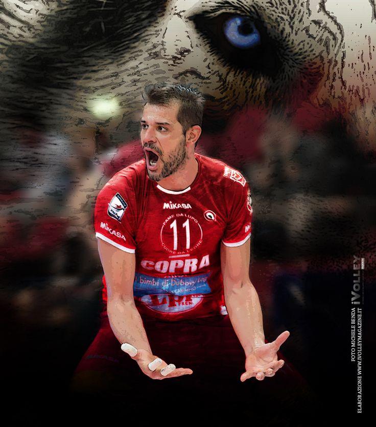 Zlatanov The wolf of Copra