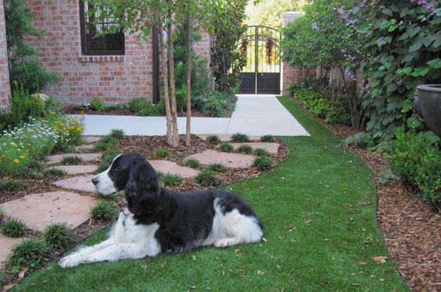 Best 25+ Artificial Grass For Dogs Ideas On Pinterest