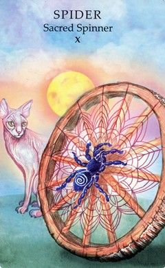 Spider: Sacred Spinner (Wheel of Fortune) - Animal Wisdom Tarot
