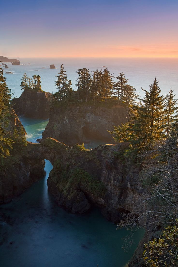 #Oregon #Coast #Trees #Sunset #Ocean #Gorgeous