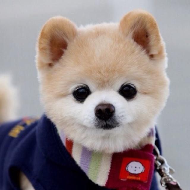 Shunsuke from Twitter 20120201_2