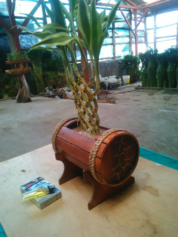 Lucky bamboo + pot barel..by PVC
