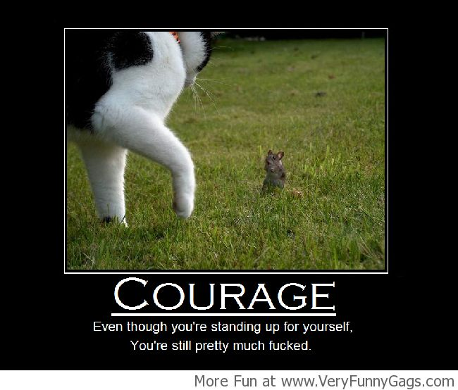 Courage Doesn't Always Mean Victory! - Very Funny Gags
