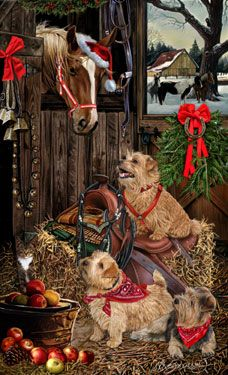 Norflok Terrier Welcoming Committee - by Margaret Sweeney
