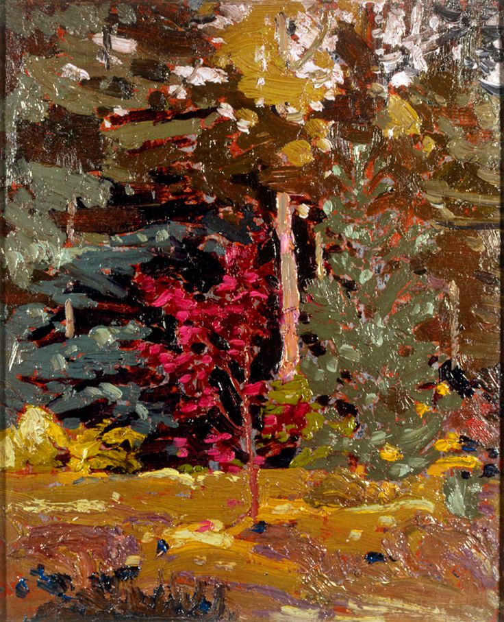 Tom Thomson Catalogue Raisonné | Maple Sapling, Algonquin Park, Fall 1915 (1915.87) | Catalogue entry