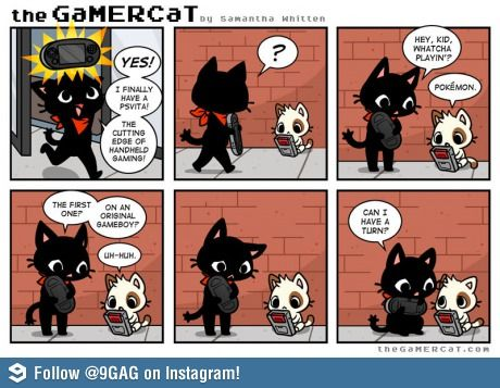 Gamer Cat-awwww so cute!