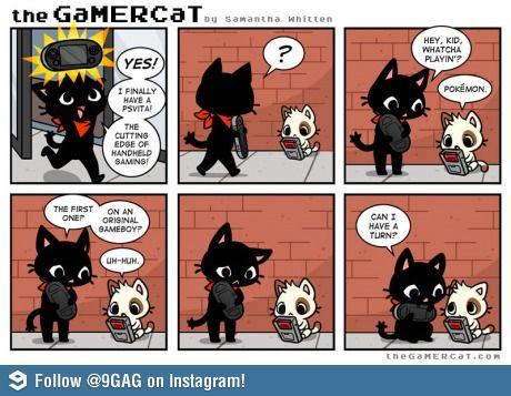 Gamer Cat-awwww so cute!
